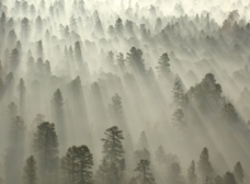 Grand Canyon at Sunrise Tim McLemore, Photographer